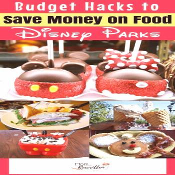 Money saving meals 823877325564419642 -  These 7 tips for saving money at Disney will spare you hun