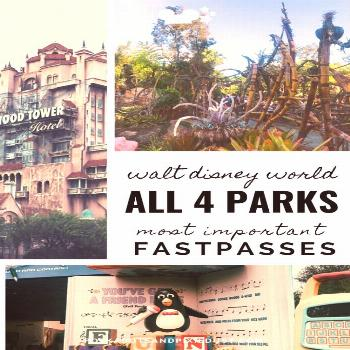 The Most Important Fast Passes in Each Walt Disney World Park The Most Important Fast Passes in Eac